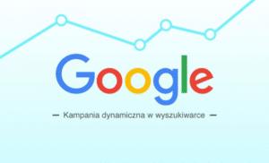 Kampania dynamiczna w sieci wyszukiwania google ads