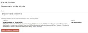 Filtr Ręczny Google przykład