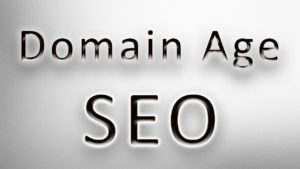 Domain Age - Wiek domeny
